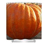 Pounds Of Pumpkin  Fun Shower Curtain