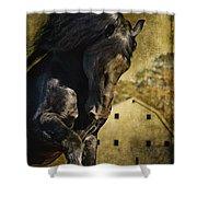 Power House Horse Shower Curtain