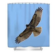 Powerful Freedom Shower Curtain