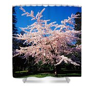 Powerscourt Gardens, Powerscourt Shower Curtain
