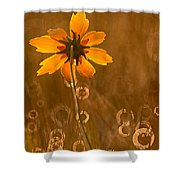 Prairie Coreopsis And Dewdrops Shower Curtain