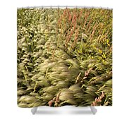 Prairie Crop With Weeds Shower Curtain