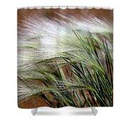 Prairie Grass, Badlands National Park Shower Curtain