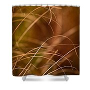 Prairie Grasses Number 4 Shower Curtain
