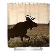 Prairie Moose Shower Curtain
