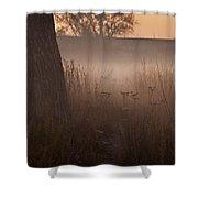 Prairie Pre Dawn Shower Curtain