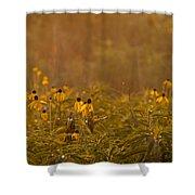 Prairie Wildflowers Shower Curtain