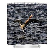 Prancing Heron Shower Curtain