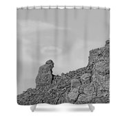 Praying Monk With Halo Camelback Mountain Bw Shower Curtain