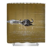 Preferred Environment Shower Curtain