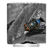 Pretty Fly For A Fly Guy Shower Curtain
