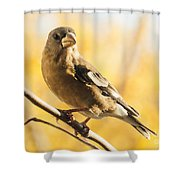 Pretty In Yellow Shower Curtain