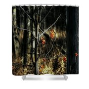 Pretty Little Red Things Shower Curtain