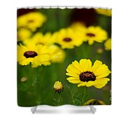 Pretty Yellow Shower Curtain