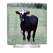 Pretty Young Thing Shower Curtain