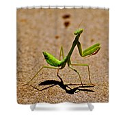 Preying Praying Shower Curtain
