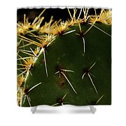 Prickly Pear Dangerous Beauty - Greeting Card Shower Curtain