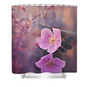 Prickly Rose Shower Curtain by Priska Wettstein