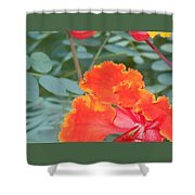 Pride On Fire Shower Curtain