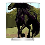 Prince Of Equus Shower Curtain