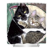 Princess And Little Rocky Shower Curtain