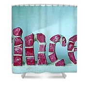 Princess Shower Curtain by Cynthia Amaral