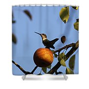Private Reservoir Shower Curtain