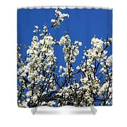 Profusion Shower Curtain
