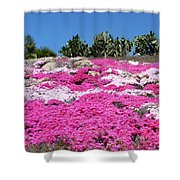 Profusion Of Pink Shower Curtain