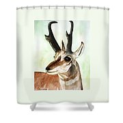 Pronghorn Magesty Shower Curtain