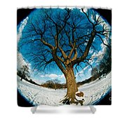 Prospect Park Tree Shower Curtain