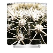 Protection Mechanism Shower Curtain
