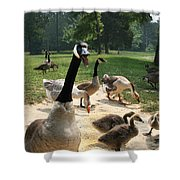 Protective Mad Mama Canadian Goose Shower Curtain