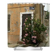 Provence Door Number 9 Shower Curtain