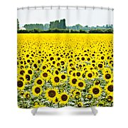Provencial Sunflowers Shower Curtain