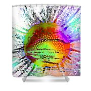 Psychedelic Daisy Shower Curtain