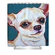 White Chihuahua - Puddy Shower Curtain