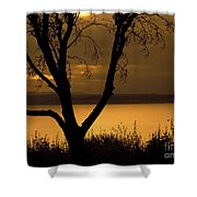 Pugent Sound Silhouetted Tree Shower Curtain