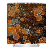 Pumpkin Abstract Shower Curtain