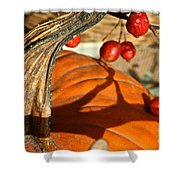 Pumpkin Berries Shower Curtain