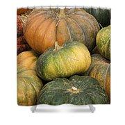 Pumpkin Farm Shower Curtain