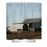 Pumpkin Farm Shower Curtain