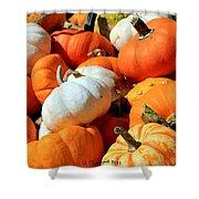 Pumpkin Harvest Shower Curtain