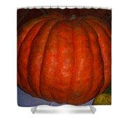 Pumpkin In Spain Shower Curtain