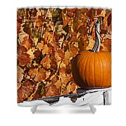Pumpkin On White Fence Post Shower Curtain