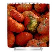 Pumpkin Pie Shower Curtain