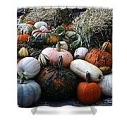 Pumpkin Piles Shower Curtain