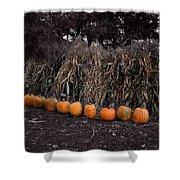 Pumpkins And Cornstalks Shower Curtain