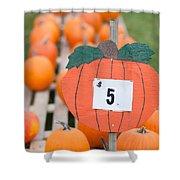 Pumpkins For Sale II Shower Curtain