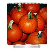 Pumpkins For Sale Shower Curtain